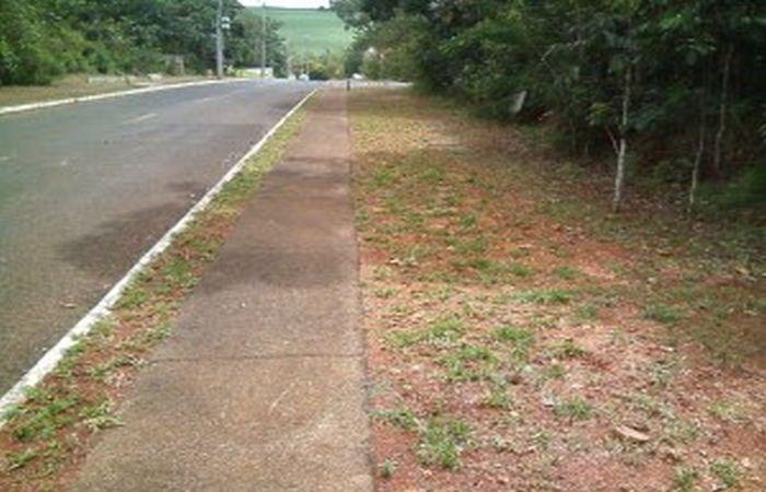 Trabalho de reposição de grama é finalizado