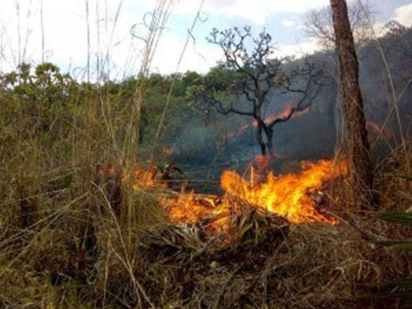 Brigada combate mais um foco de incêndio