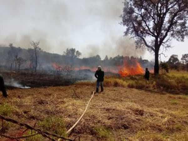 Brigada do Santa Mônica combate foco de incêndio